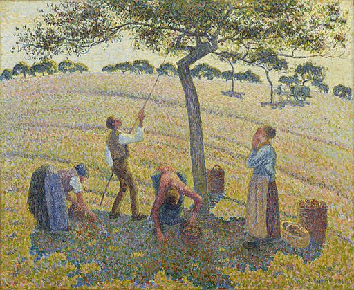 Camille Pissarro Apple harvest at Eragny 1888